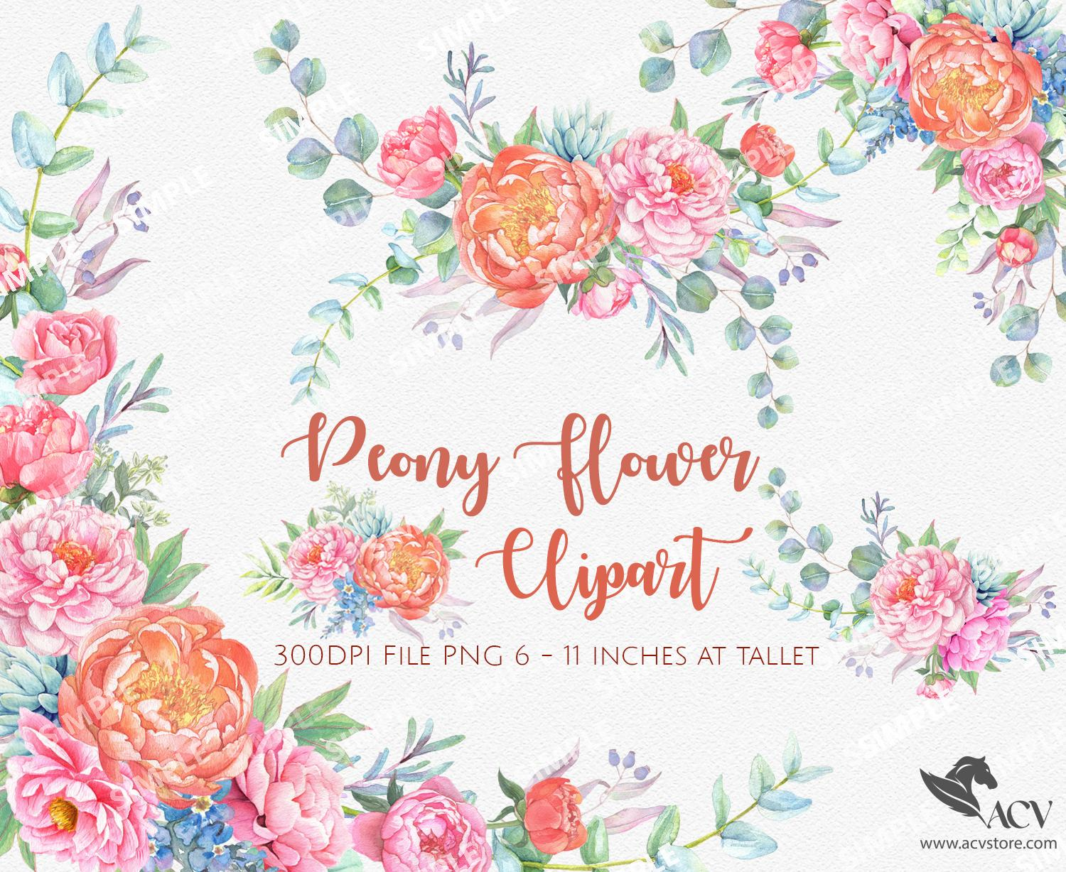 Peonies Watercolor Flowers Clipart, Spring Wedding Flowers, Hand painted Watercolour floral, Wedding invitation, greeting card | WCCTPN_5