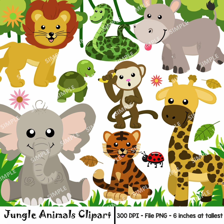 Jungle Animal Clipart, Watercolor Safari Animals Clipart, Animal Clipart, Safari Animals Clipart Set, Zoo Animal, Instant download    PEJA_01