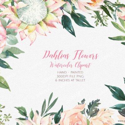Watercolor Dahlias Roses Flower Clipart, Dahlias Roses clipart, Dahlias watercolor, Clipart Dahlias, Wedding Dahlias clipart   MGC_09