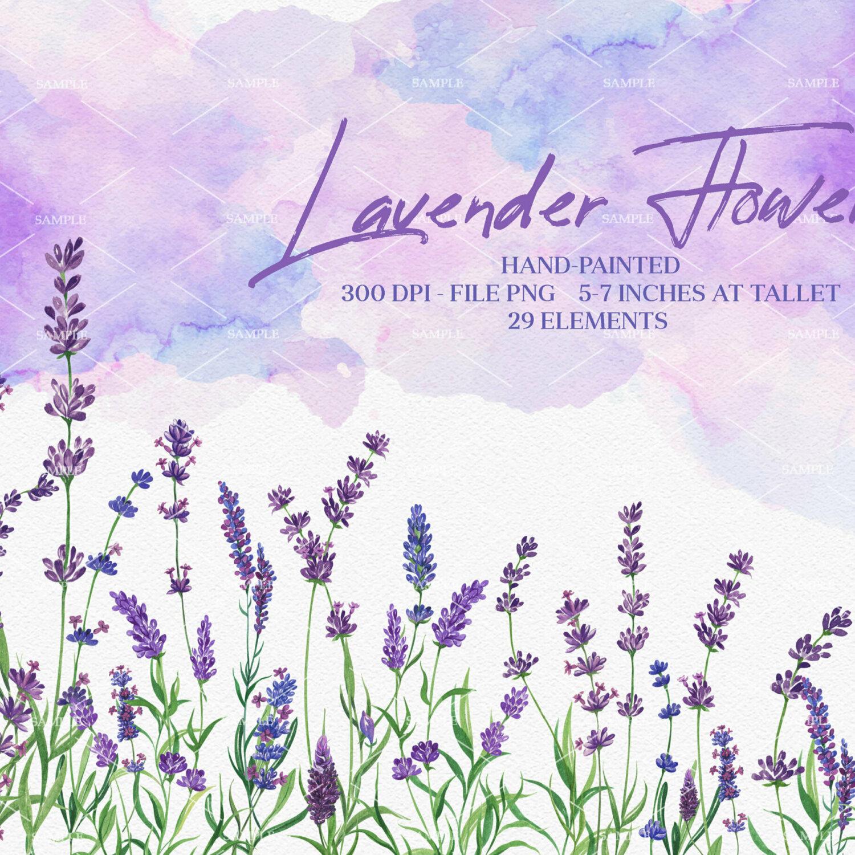Watercolor Lavender Clipart, Vintage Lavandula, Lavender wreaths watercolor, Romantic violet purple flowers tender, wedding invitations   WCLF_01