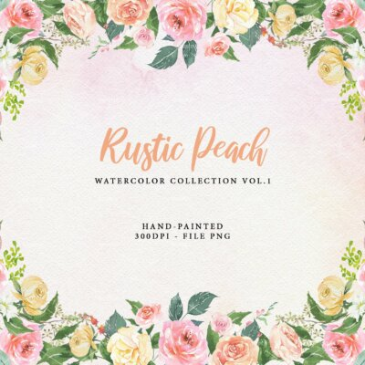 Rose peach Flower, Roses Flower Clipart, Rose peach watercolor flower clipart burgundy and blush, Boho Bordo Watercolor Clipart, peach | WCRP_03